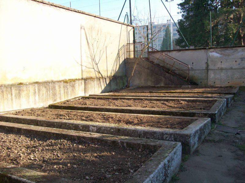 Planches prêtes à cultiver