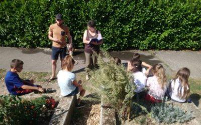 Journée à la ferme pour 28 collégien·nes  !