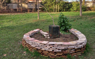 Le «jardin en trou de serrure», le retour…