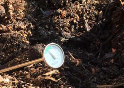 Prise de température du compost à la ferme de la croix-rousse à lyon 4